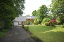 2 bed Detached Bungalow in Daisy Lea Lane, Edgerton...