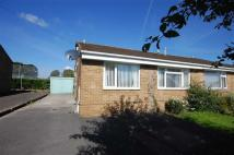 Semi-Detached Bungalow to rent in Foxcroft Drive, Rastrick...