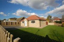 Howard Avenue Detached Bungalow for sale