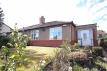 Semi-Detached Bungalow for sale in Dudwell Lane...