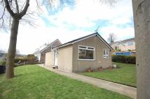 Detached Bungalow in Willow Dene Avenue...