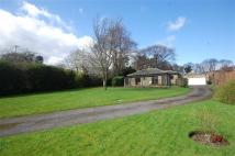 Detached Bungalow in Blake Hall Nursery...