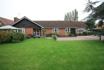 Bungalow in Burton Row, Brent Knoll...