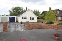 Detached Bungalow in New Road, East Huntspill...
