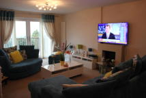 Detached Bungalow to rent in Salisbury Drive...