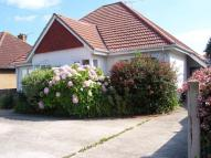 3 bed Detached Bungalow to rent in Bereweeke Road, Felpham...