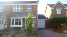 3 bedroom semi detached property to rent in Douglas Close...