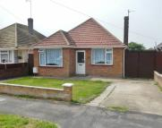 Detached Bungalow in Marlowe Road...