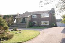 4 bedroom Detached property in Dumont Avenue...