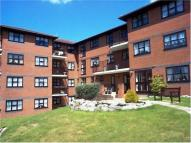 Flat for sale in Beechaven Court...