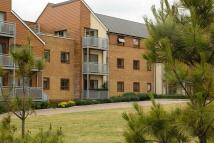 2 bed Flat to rent in Serenity Court...