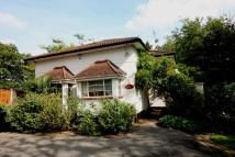Detached Bungalow for sale in Orpington Road...