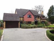Detached house for sale in Broom Lane...