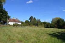 4 bedroom Detached house for sale in Stonegate, East Sussex