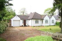 3 bedroom Detached Bungalow in Kingswood Way...
