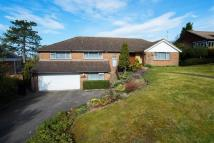 5 bedroom Detached property in Hook Hill, Sanderstead...