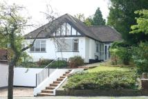 Detached Bungalow for sale in Mitchley Avenue, Purley...