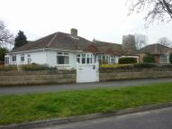 Bungalow to rent in Beresford Road...