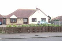 3 bed Detached Bungalow to rent in Thorpe Road...