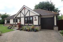Detached Bungalow for sale in Sladburys Lane...