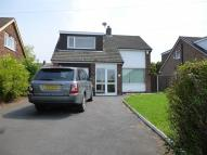 Detached Bungalow to rent in Bank Head Lane, Hoghton