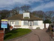 Semi-Detached Bungalow to rent in Wroxham Close, Eastwood...