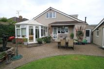 Bellhouse Road Detached Bungalow for sale