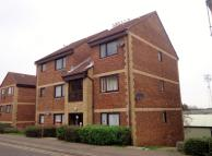 Flat to rent in Roots Hall Drive...