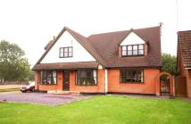 3 bedroom Detached property for sale in Maldon Road, Margaretting