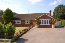 3 bed Detached Bungalow for sale in Maldon Road, Margaretting