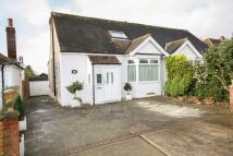 Semi-Detached Bungalow in The Mount, Noak Hill...