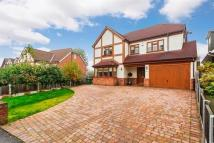 6 bed Detached house for sale in Western Road, Billericay
