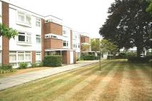 2 bed Flat in Sweyn Place...