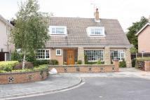 4 bed Detached house for sale in Merrilocks Green...