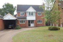 4 bedroom Detached house to rent in Mayfields...