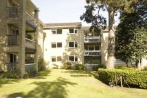 Flat for sale in Endcliffe Vale Road...