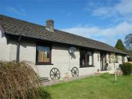 4 bed Detached Bungalow in Falcondale Drive...