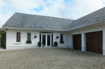 Detached home for sale in Llwynygroes...