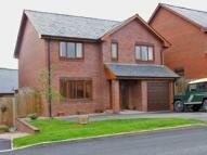 Detached home in 16 Troed Y Bryn...
