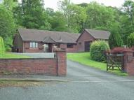 3 bedroom Detached Bungalow for sale in Oak Dene 16A Cefn Morfa...
