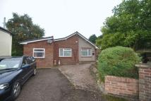 3 BEDROOM BUNGALOW Detached Bungalow to rent
