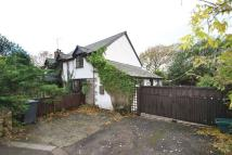 Parkend Walk Detached house to rent