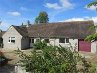 Martock Road Bungalow to rent