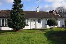 1 bed Bungalow to rent in Willow Close, Brentford