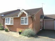 Semi-Detached Bungalow for sale in Ashleigh Court...