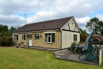 Detached Bungalow for sale in West Street, Glenfield