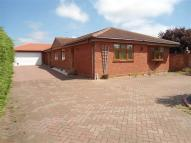 5 bedroom Detached Bungalow in Penzance Road, Kesgrave...