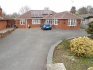 Detached Bungalow in Bucklesham Road, Ipswich...