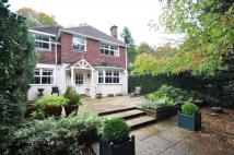 Blackheath Detached house to rent