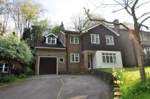 6 bed Detached property to rent in Shackstead Lane